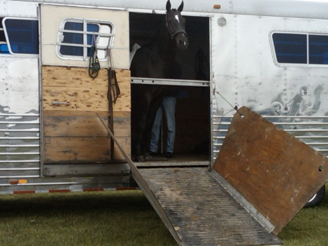 Safe , comfortable horse hauling